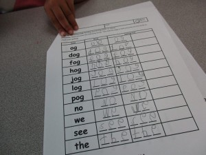 level d language worksheet